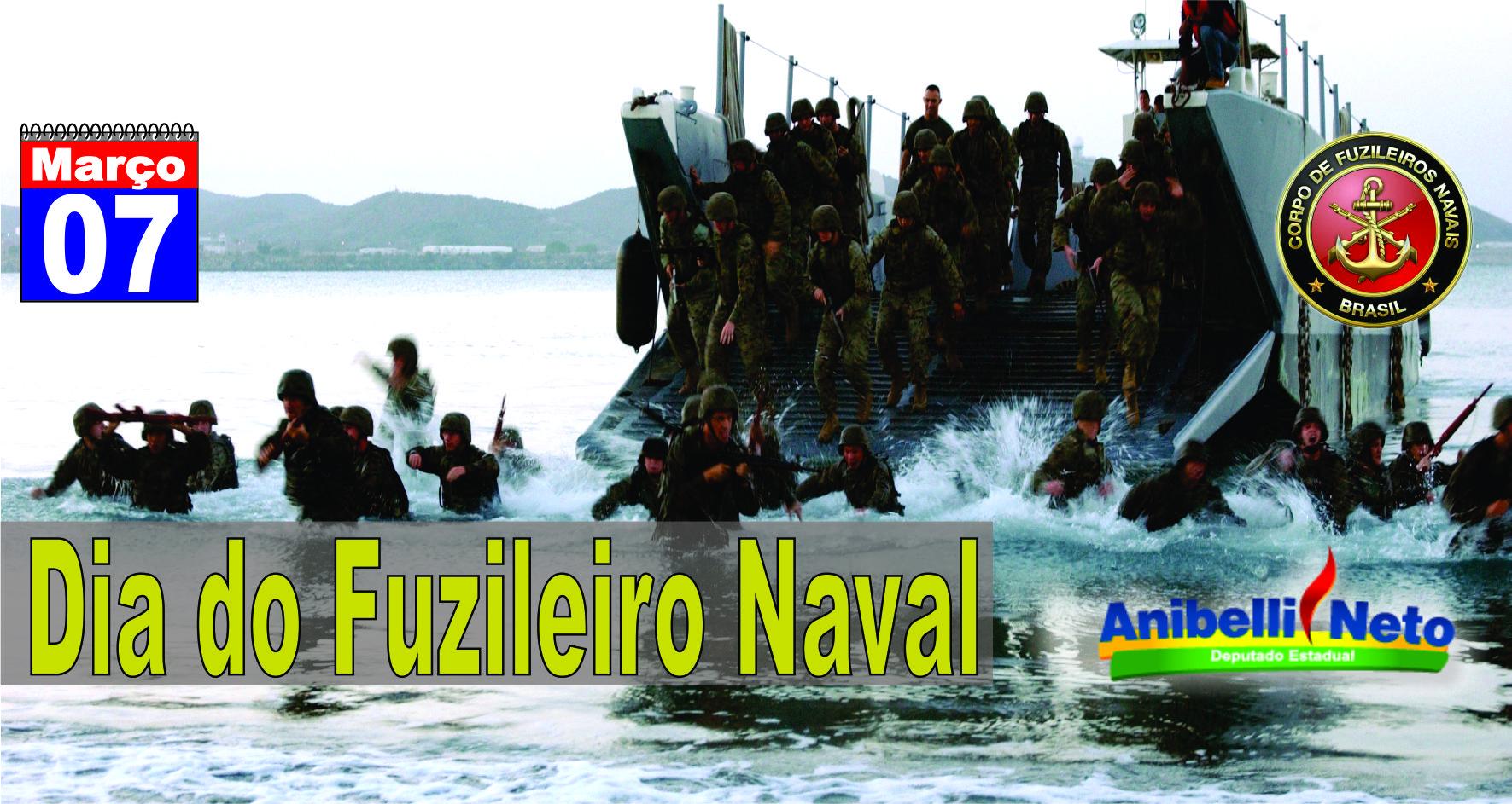 Resultado de imagem para dia do fuzileiro naval