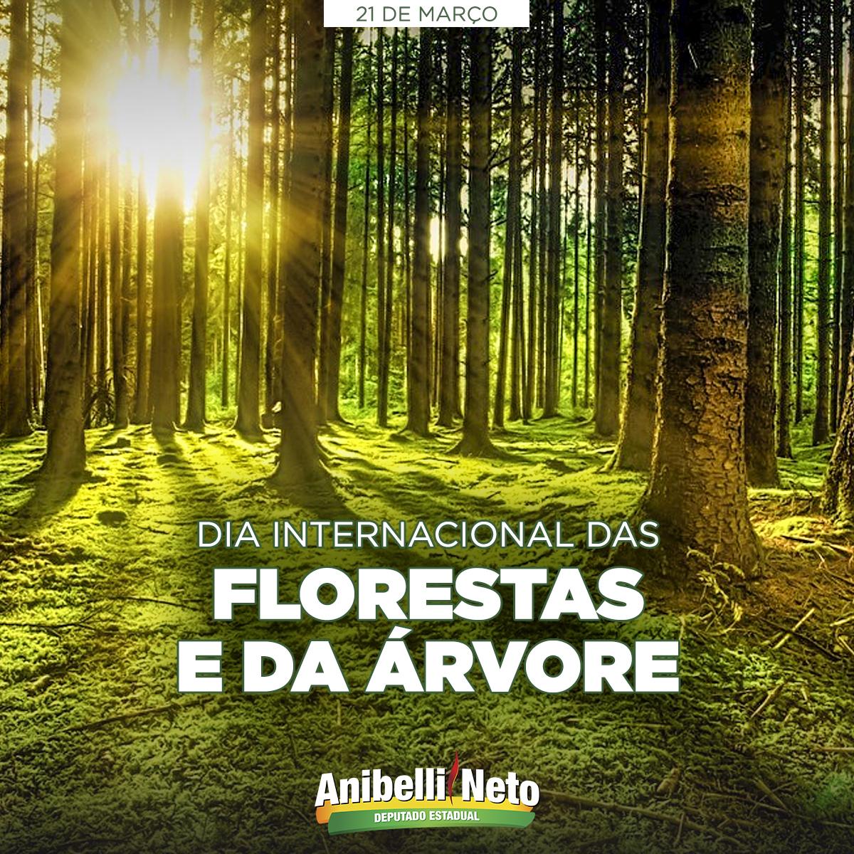 Dia Internacional das Florestas e da Árvore