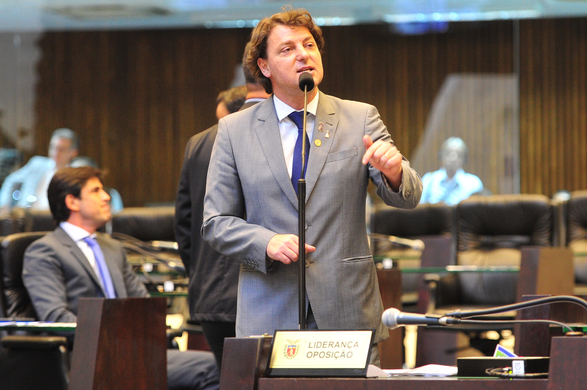 Anibelli Neto pede atenção à produção de Leite e Queijos no Paraná.