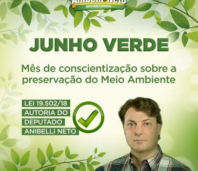 Junho Verde: mês de conscientização sobre a preservação do Meio Ambiente