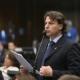 Vitamina D: Anibelli Neto apoia proposta da Frente Parlamentar do Coronavírus