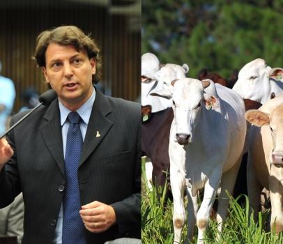 Anibelli Neto comemora conquista: Passam a valer nova regras para trânsito de animais