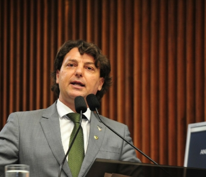 Projeto de Anibelli Neto regulamenta serviços de guarda de animais