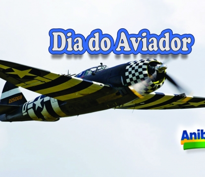 Dia do Aviador