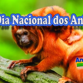 Dia Nacional dos Animais
