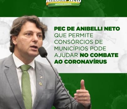 PEC de Anibelli Neto que permite consórcios de municípios pode ajudar no combate ao coronavírus